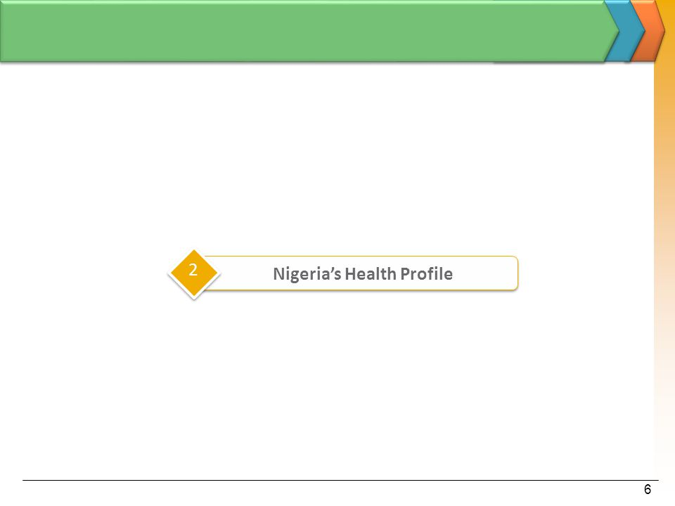 6 2 Nigeria's Health Profile