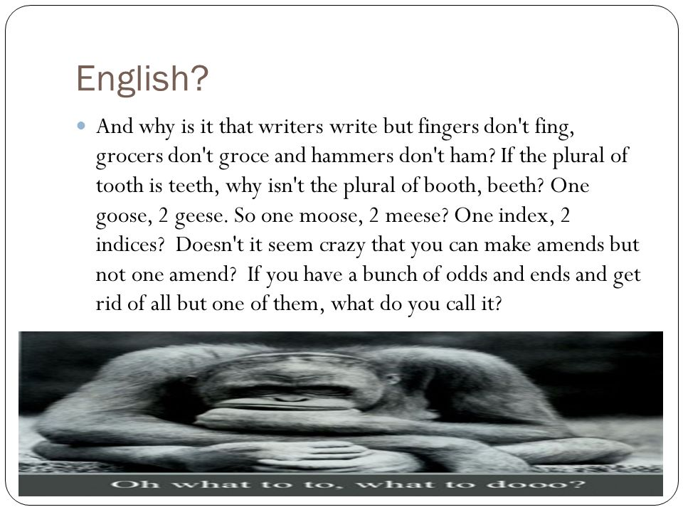 English? And why is it that writers write but fingers don't fing, grocers don't groce and hammers don't ham? If the plural of tooth is teeth, why isn'
