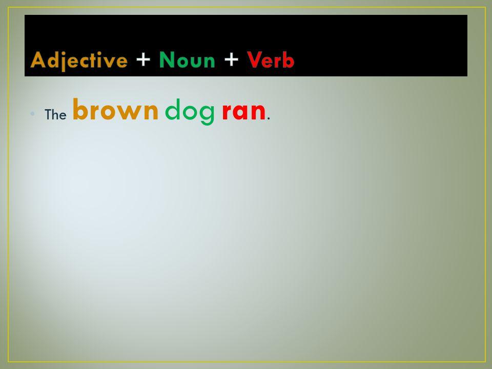 The brown dog ran.