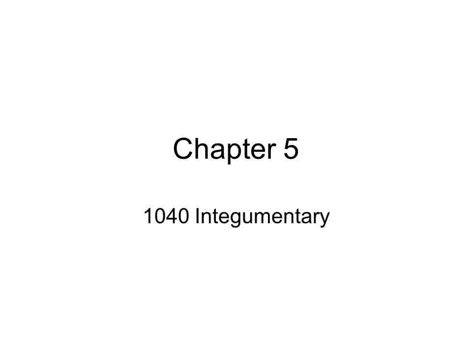 Chapter 5 1040 Integumentary