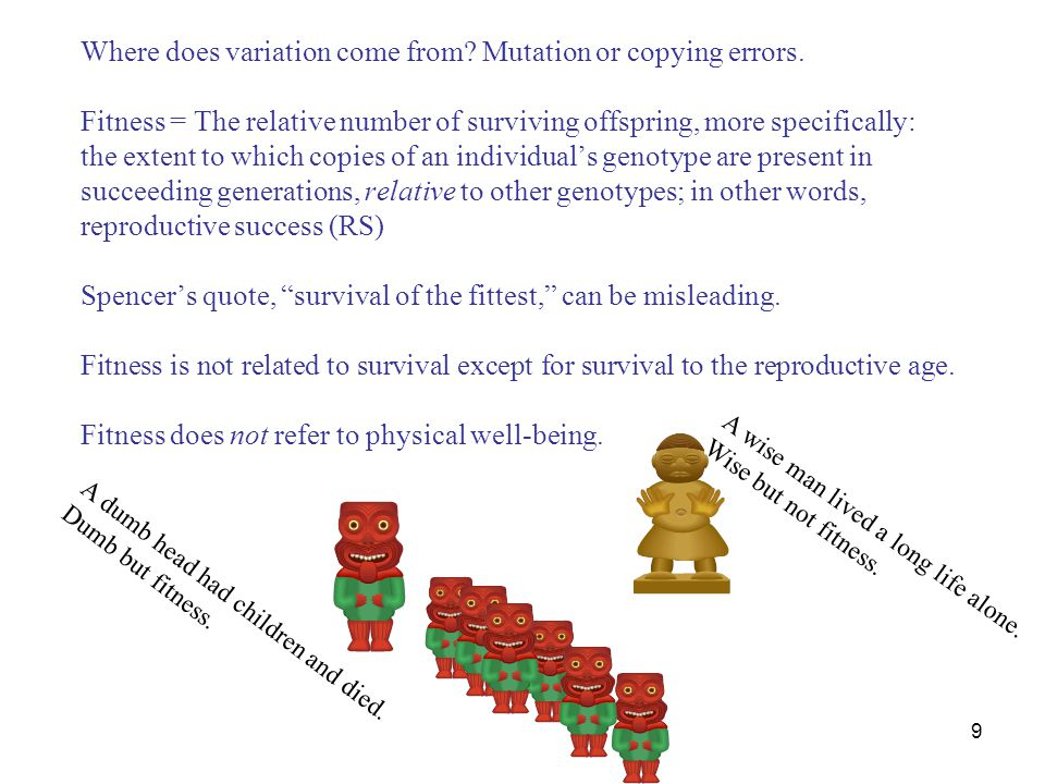 9 Where does variation come from? Mutation or copying errors. Fitness = The relative number of surviving offspring, more specifically: the extent to w