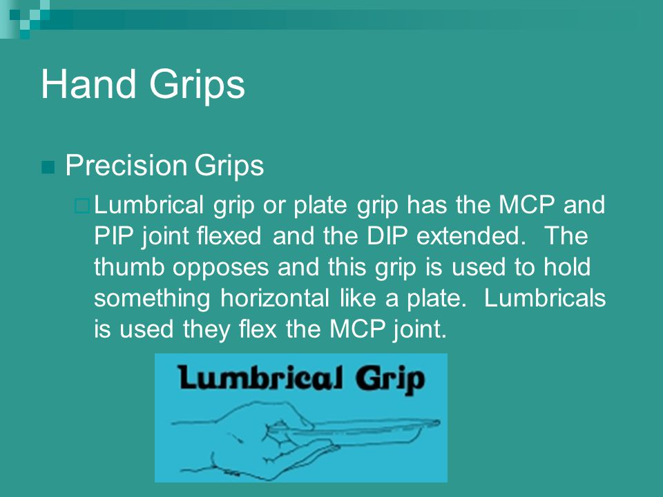 Hand Grips Precision Grips  Lumbrical grip or plate grip has the MCP and PIP joint flexed and the DIP extended. The thumb opposes and this grip is us