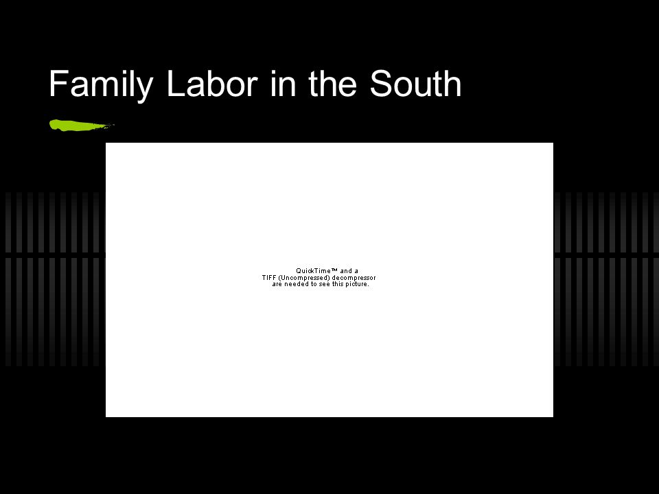 Family Labor in the South