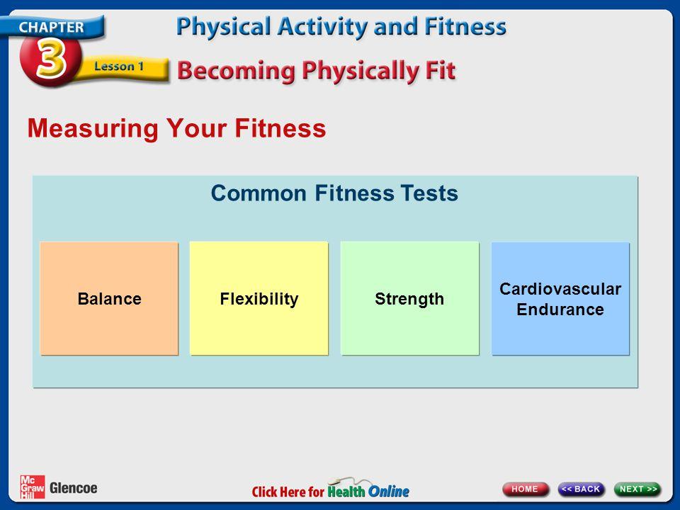 Measuring Your Fitness Common Fitness Tests BalanceFlexibilityStrength Cardiovascular Endurance