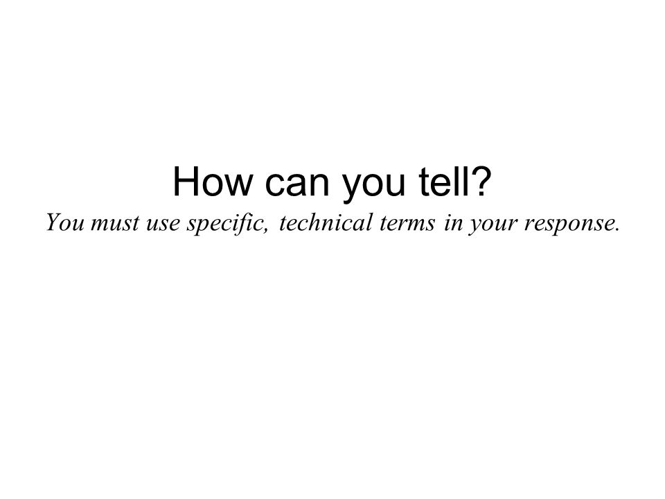 How can you tell You must use specific, technical terms in your response.