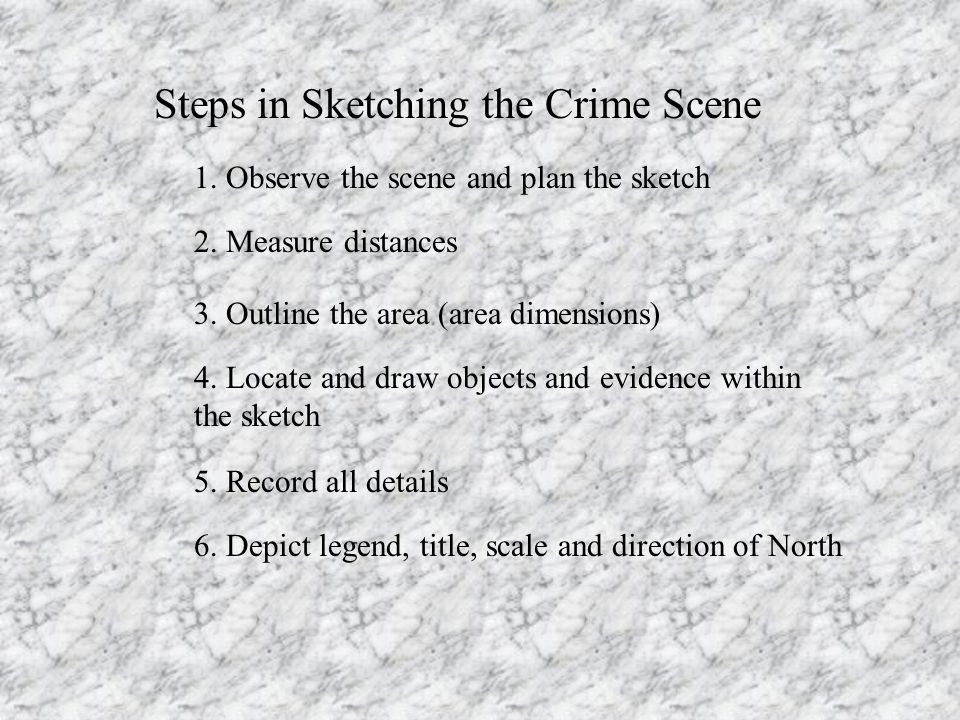 Steps in Sketching the Crime Scene 1. Observe the scene and plan the sketch 2.