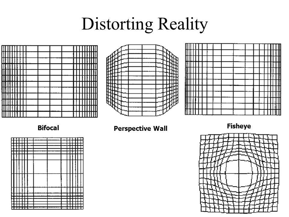 Distorting Reality Bifocal Perspective Wall Fisheye