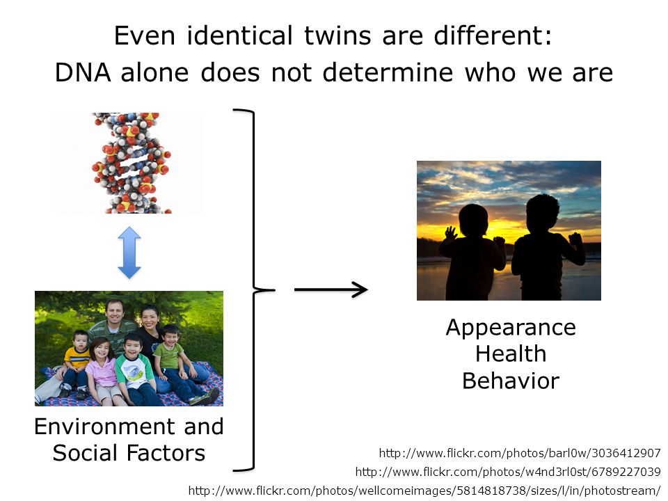 Even identical twins are different: DNA alone does not determine who we are Environment and Social Factors http://www.flickr.com/photos/barl0w/3036412907 http://www.flickr.com/photos/w4nd3rl0st/6789227039 http://www.flickr.com/photos/wellcomeimages/5814818738/sizes/l/in/photostream/ Appearance Health Behavior