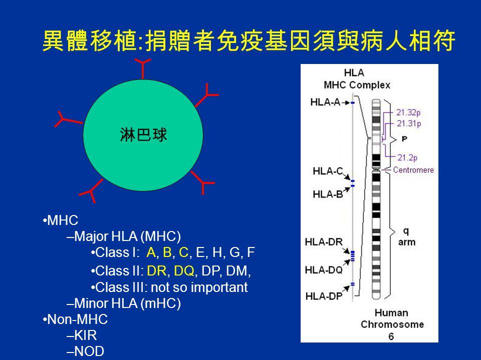 異體移植 : 捐贈者免疫基因須與病人相符 淋巴球 MHC –Major HLA (MHC) Class I: A, B, C, E, H, G, F Class II: DR, DQ, DP, DM, Class III: not so important –Minor HLA (mHC) Non-