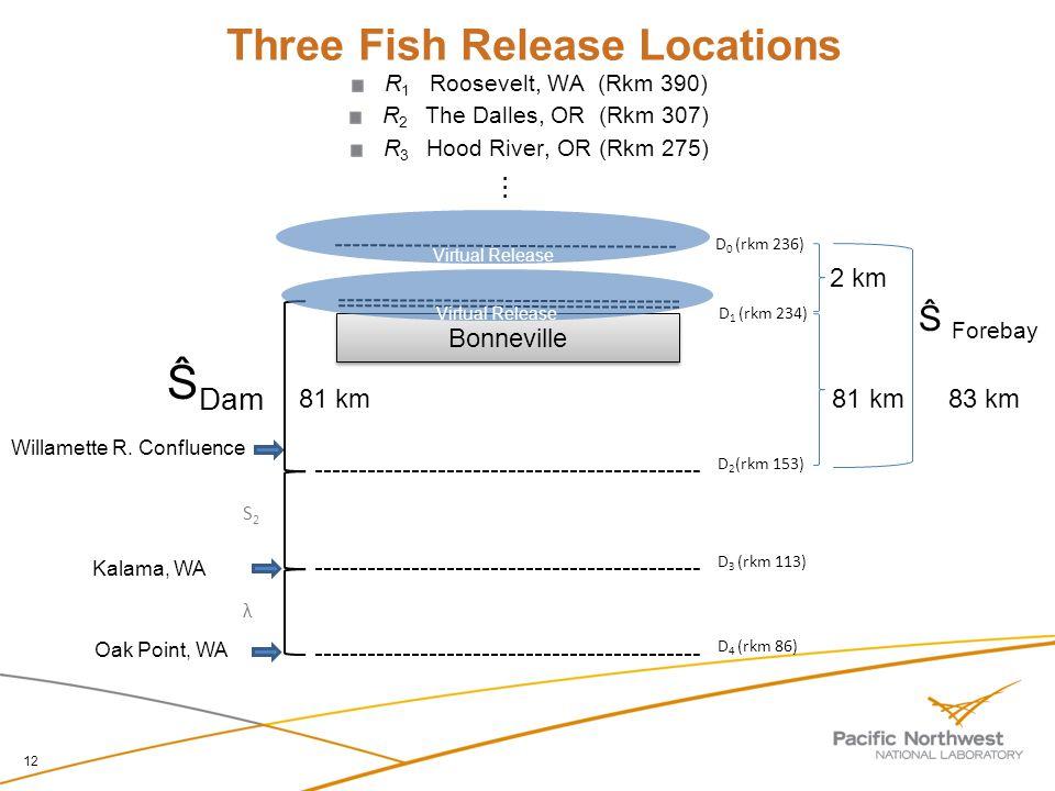 12 R 1 Roosevelt, WA (Rkm 390) R 2 The Dalles, OR (Rkm 307) R 3 Hood River, OR (Rkm 275) Three Fish Release Locations D 0 (rkm 236)...... 2 km Willame