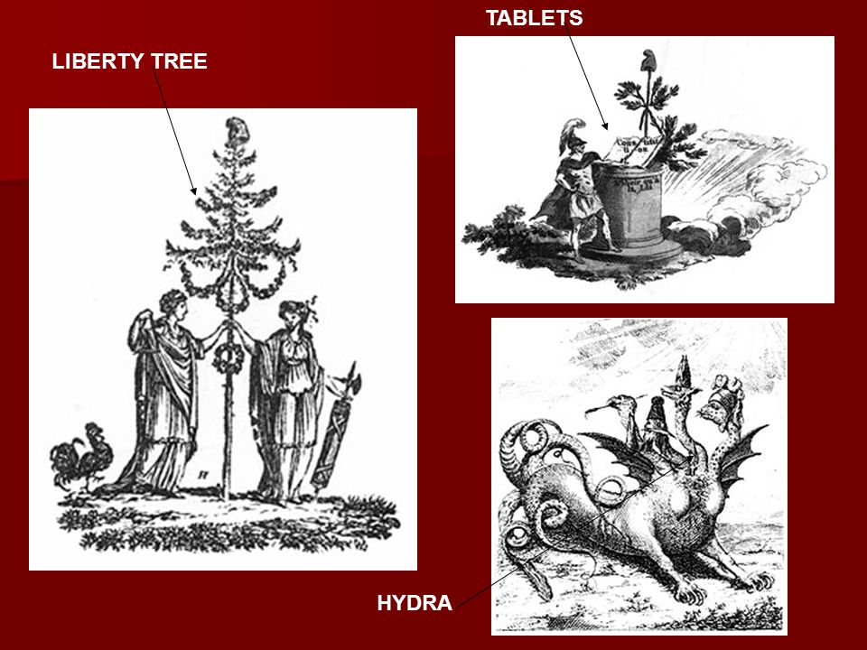 LIBERTY TREE TABLETS HYDRA