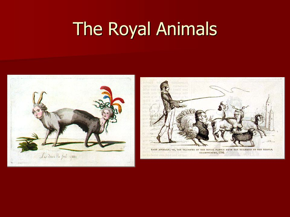 The Royal Animals