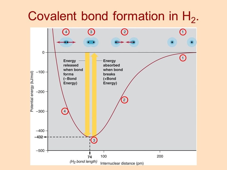 Covalent bond formation in H 2.