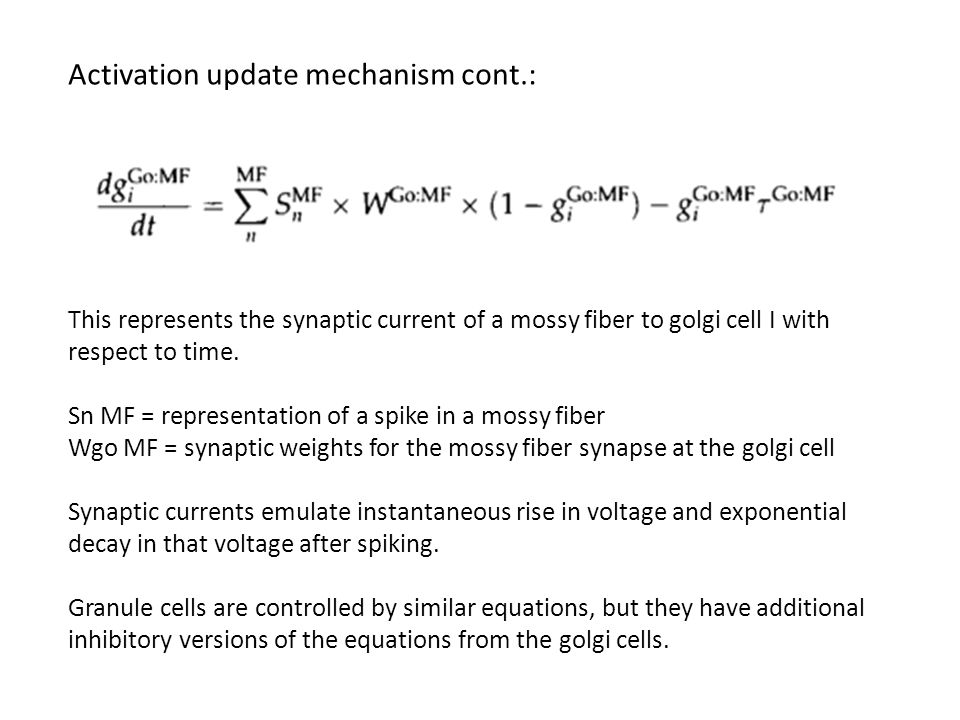Activation update mechanism cont.: This represents the synaptic current of a mossy fiber to golgi cell I with respect to time.