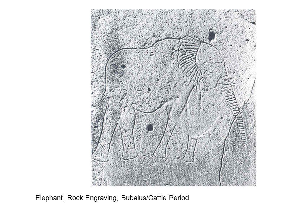 Super imposition, Elephant and Giraffes, Engraving, Fezan Region, Libya After 8000 BC Appr.