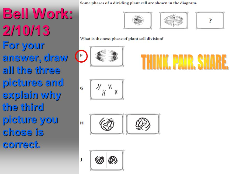 Bell Work: 2/10/13 For your answer, draw all the three pictures and explain why the third picture you chose is correct.
