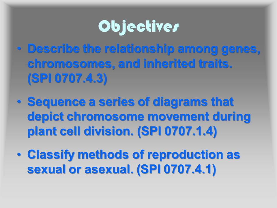 Objectives Describe the relationship among genes, chromosomes, and inherited traits.
