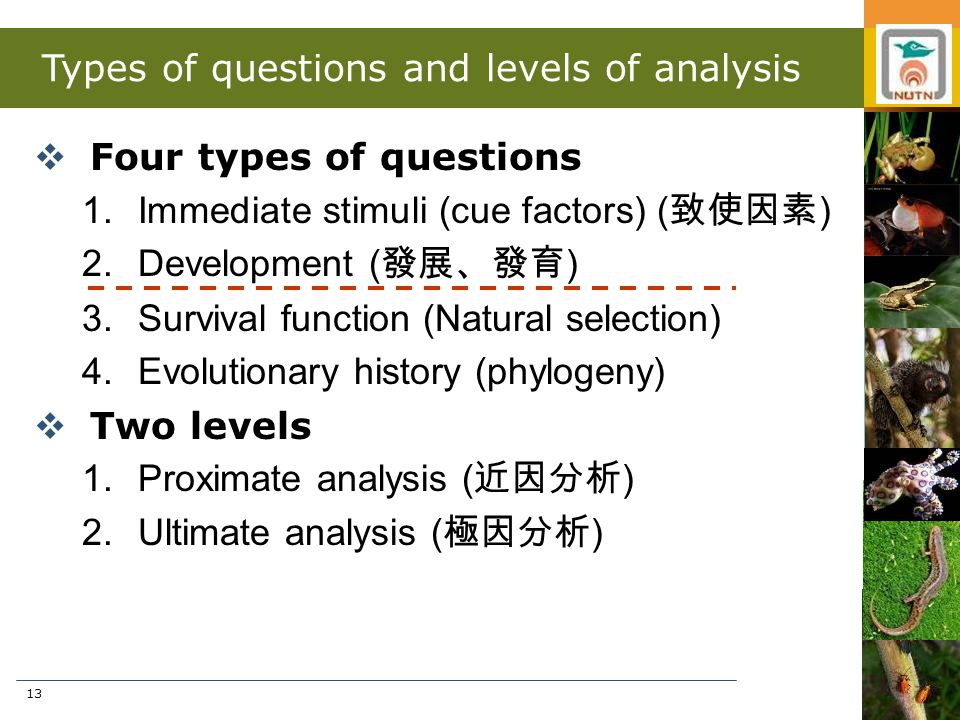13 Types of questions and levels of analysis  Four types of questions 1.Immediate stimuli (cue factors) ( 致使因素 ) 2.Development ( 發展、發育 ) 3.Survival f