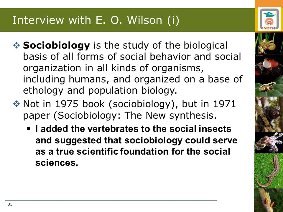33 Interview with E. O. Wilson (i)  Sociobiology is the study of the biological basis of all forms of social behavior and social organization in all