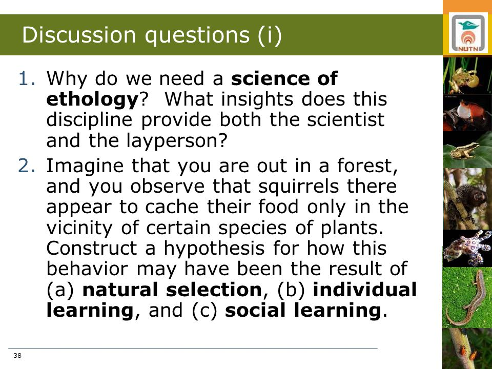 38 Discussion questions (i) 1.Why do we need a science of ethology.
