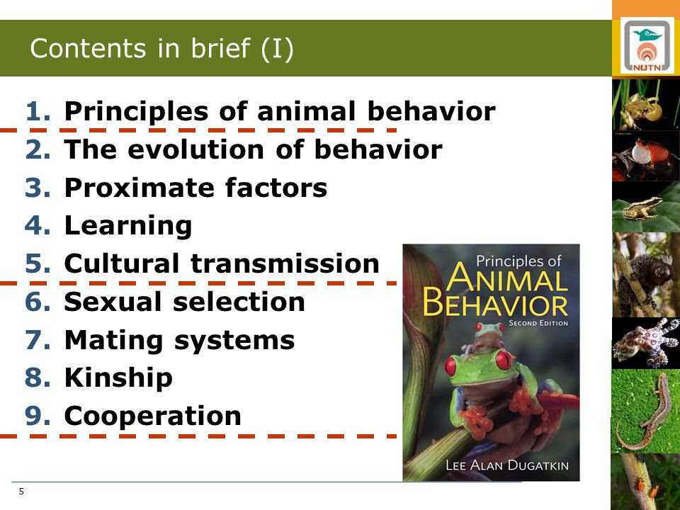 5 Contents in brief (I) 1.Principles of animal behavior 2.The evolution of behavior 3.Proximate factors 4.Learning 5.Cultural transmission 6.Sexual selection 7.Mating systems 8.Kinship 9.Cooperation