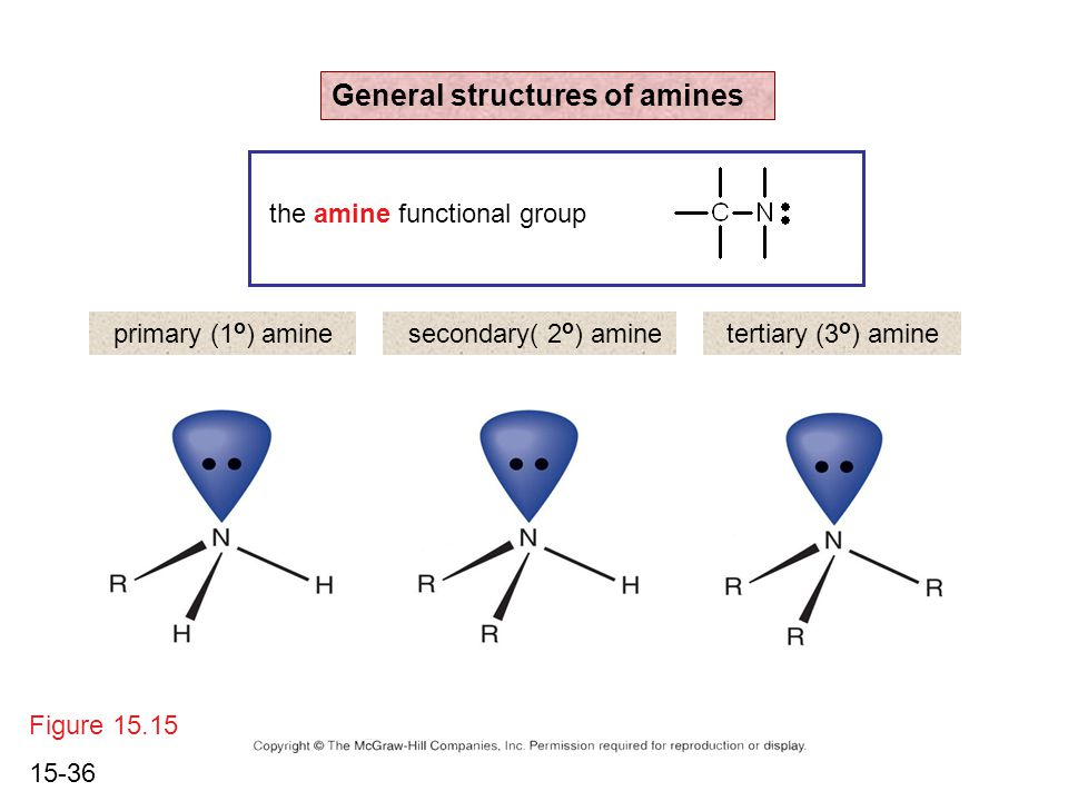 15-36 Figure 15.15 General structures of amines primary (1 o ) aminesecondary( 2 o ) aminetertiary (3 o ) amine the amine functional group