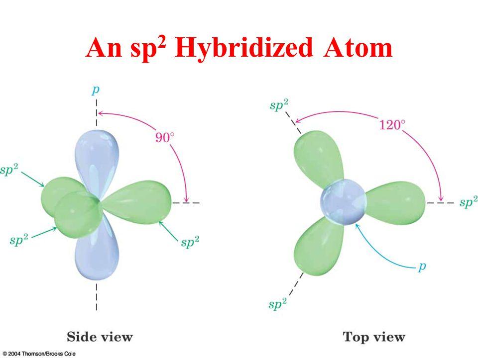 An sp 2 Hybridized Atom