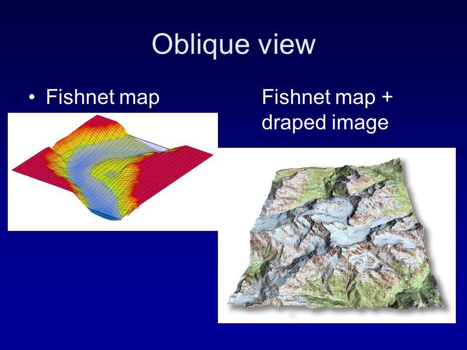 Oblique view Fishnet mapFishnet map + draped image