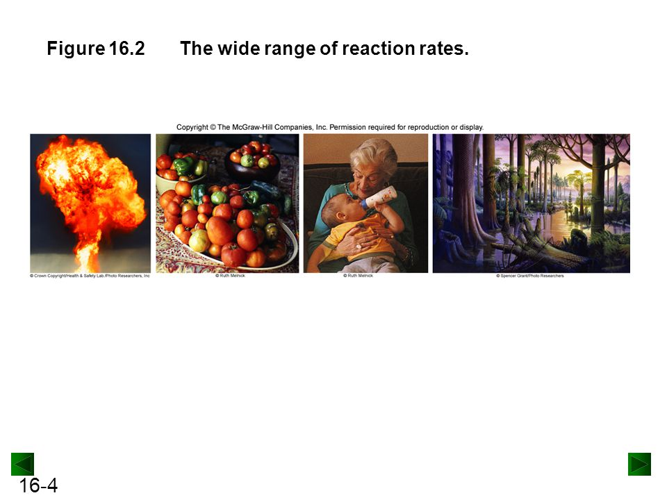 16-4 Figure 16.2The wide range of reaction rates.