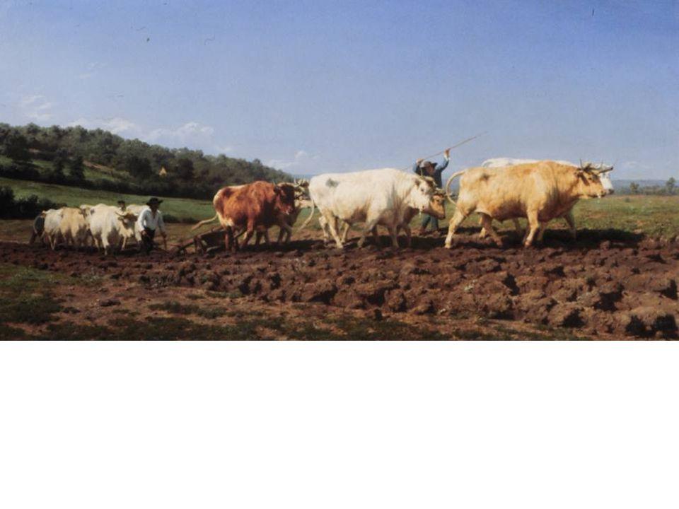Rosa Bonheur, Plowing at Nivernais, 1850