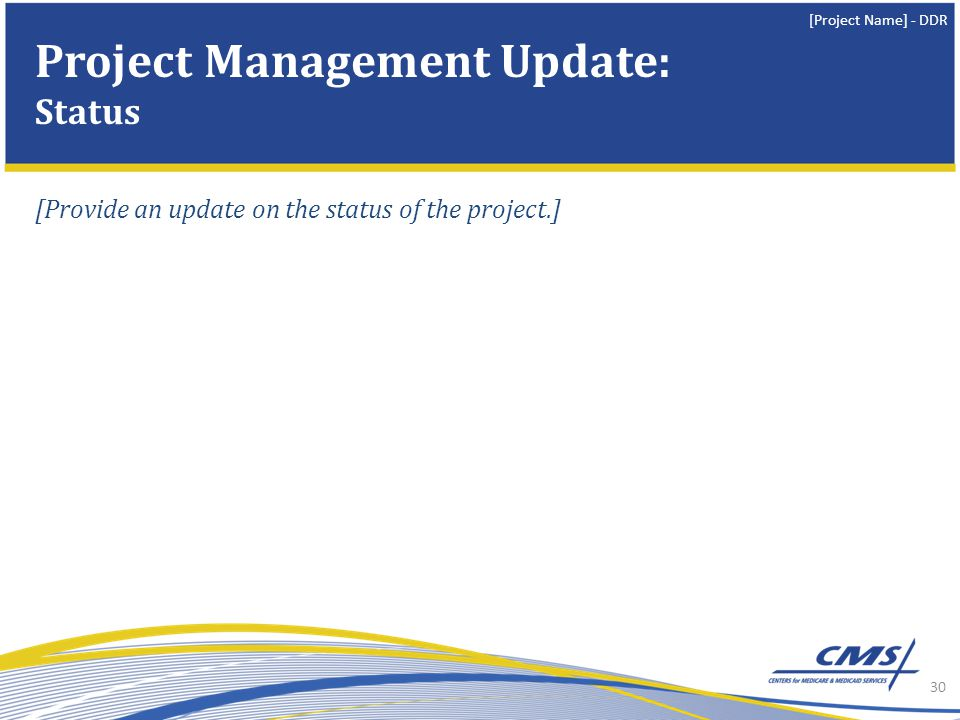 [Project Name] - DDR [Provide an update on the status of the project.] 30 Project Management Update: Status