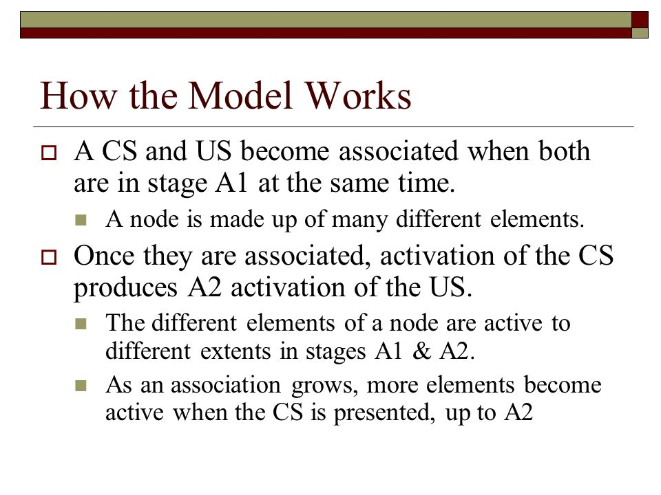 How the Model Works  A CS and US become associated when both are in stage A1 at the same time.