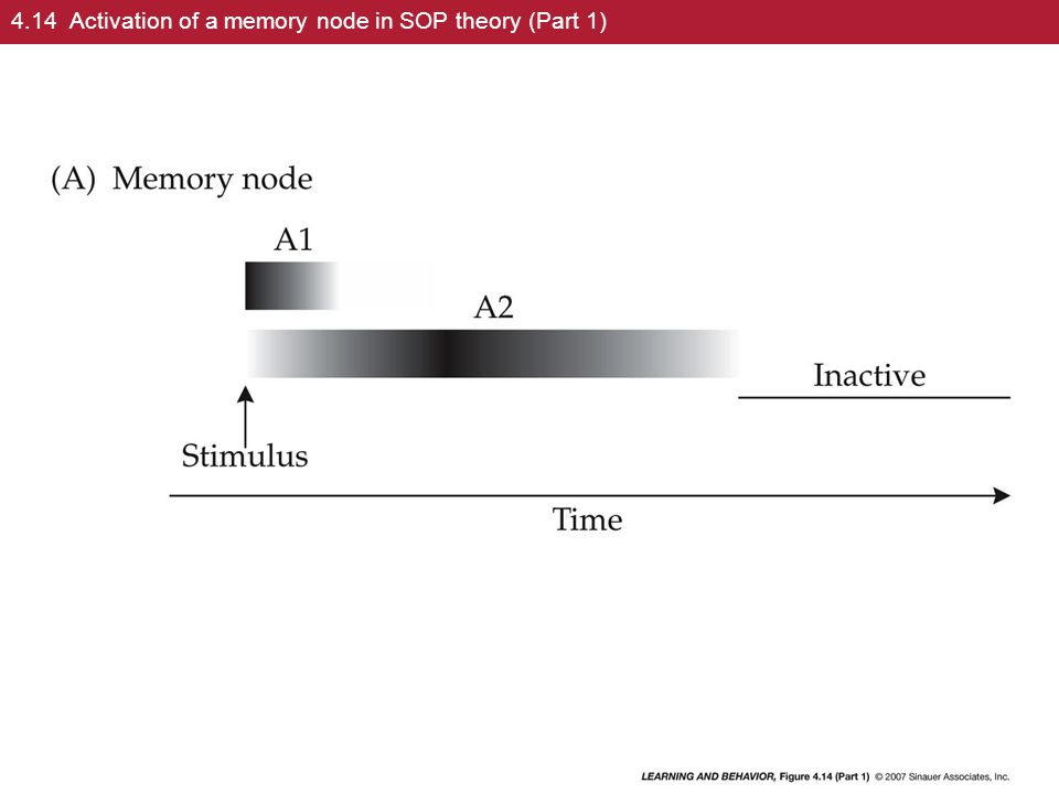 4.14 Activation of a memory node in SOP theory (Part 1)