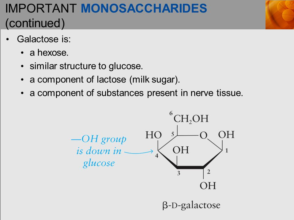 IMPORTANT MONOSACCHARIDES (continued) Galactose is: a hexose.