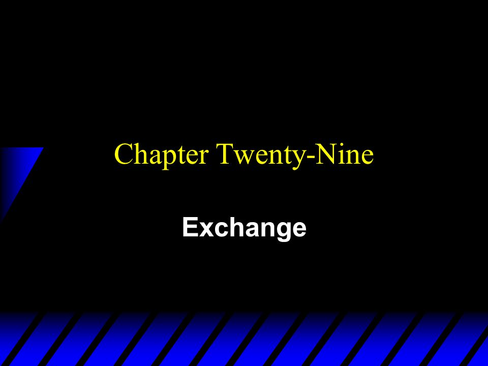 Chapter Twenty-Nine Exchange