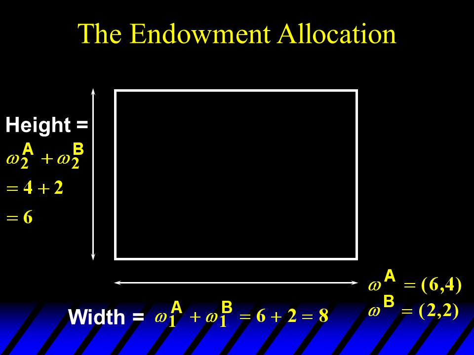 Width = Height = The Endowment Allocation
