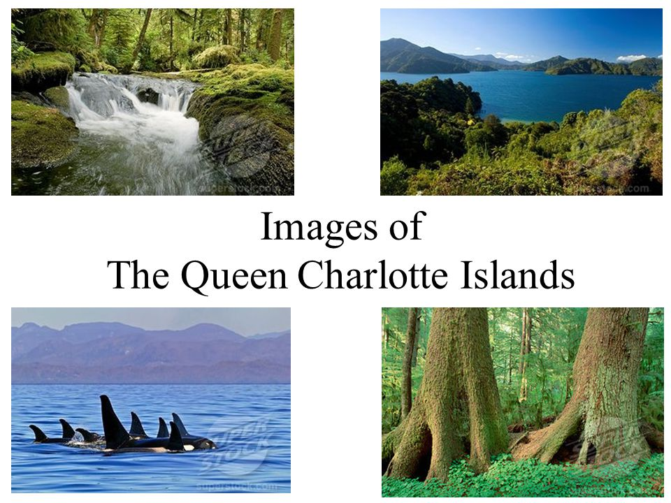 Images of The Queen Charlotte Islands