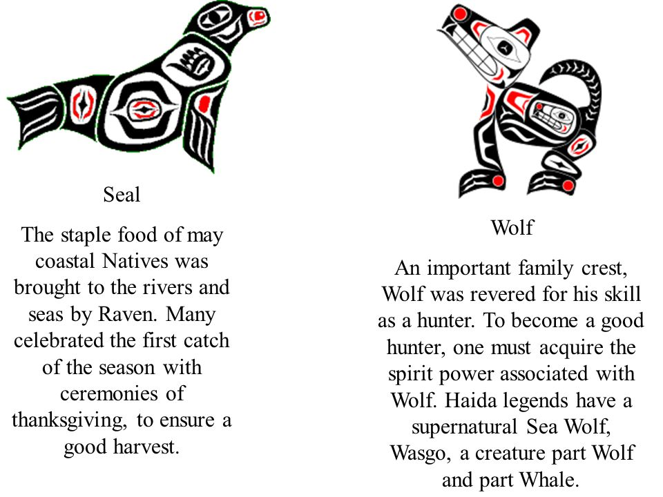 Seal The staple food of may coastal Natives was brought to the rivers and seas by Raven. Many celebrated the first catch of the season with ceremonies