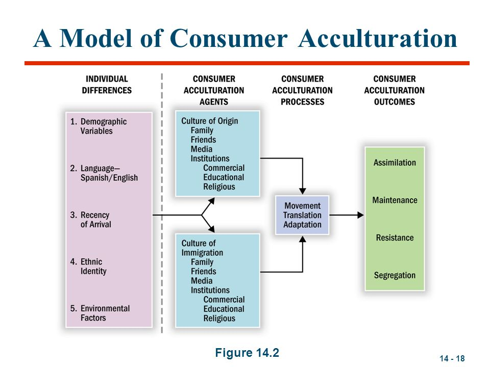 14 - 18 A Model of Consumer Acculturation Figure 14.2