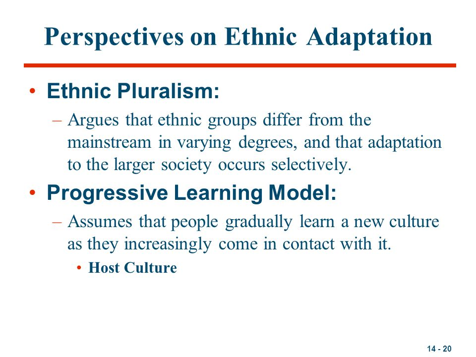 14 - 20 Perspectives on Ethnic Adaptation Ethnic Pluralism: –Argues that ethnic groups differ from the mainstream in varying degrees, and that adaptat