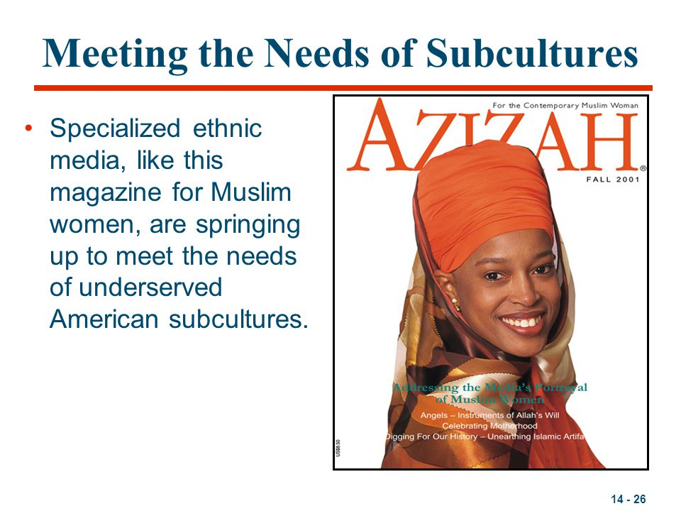 14 - 26 Meeting the Needs of Subcultures Specialized ethnic media, like this magazine for Muslim women, are springing up to meet the needs of underser