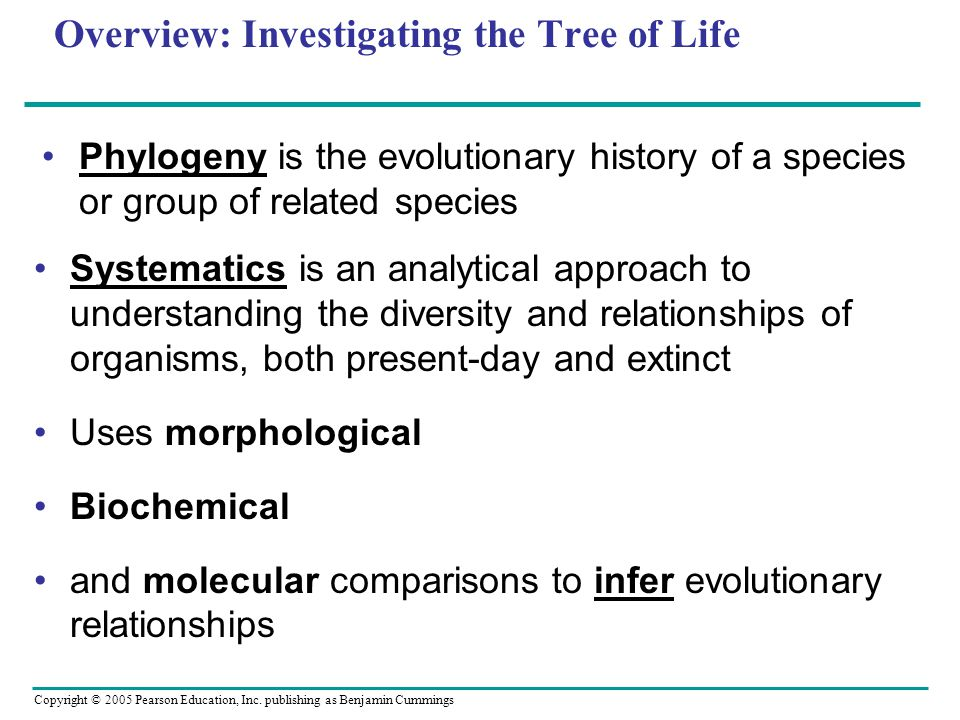 Copyright © 2005 Pearson Education, Inc. publishing as Benjamin Cummings Overview: Investigating the Tree of Life Phylogeny is the evolutionary histor