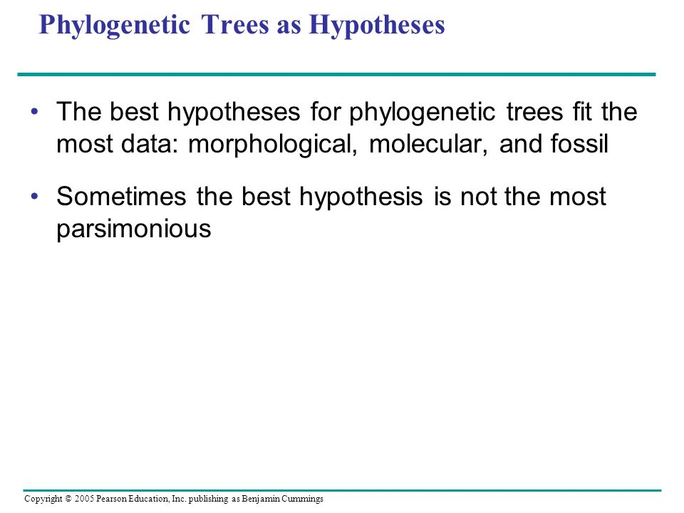 Copyright © 2005 Pearson Education, Inc. publishing as Benjamin Cummings Phylogenetic Trees as Hypotheses The best hypotheses for phylogenetic trees f
