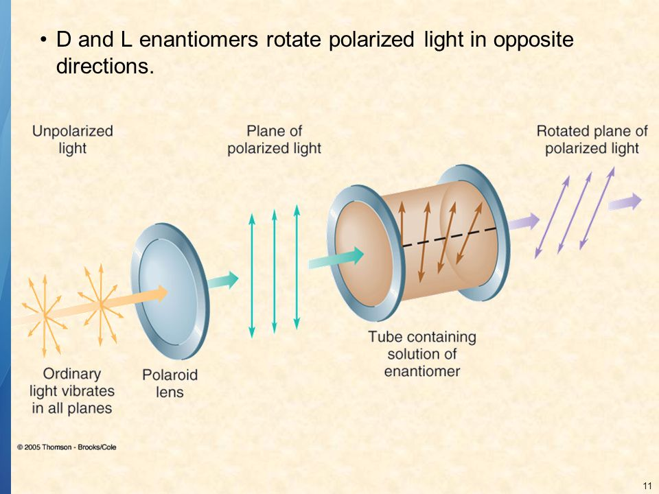11 D and L enantiomers rotate polarized light in opposite directions.