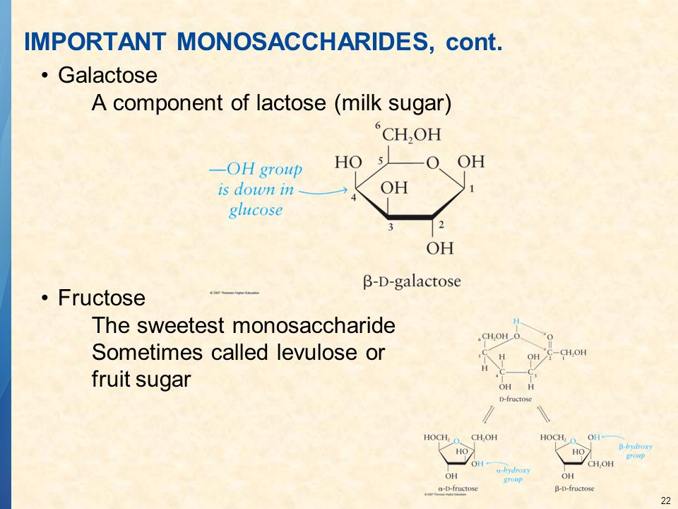 22 IMPORTANT MONOSACCHARIDES, cont. Galactose A component of lactose (milk sugar) Fructose The sweetest monosaccharide Sometimes called levulose or fr