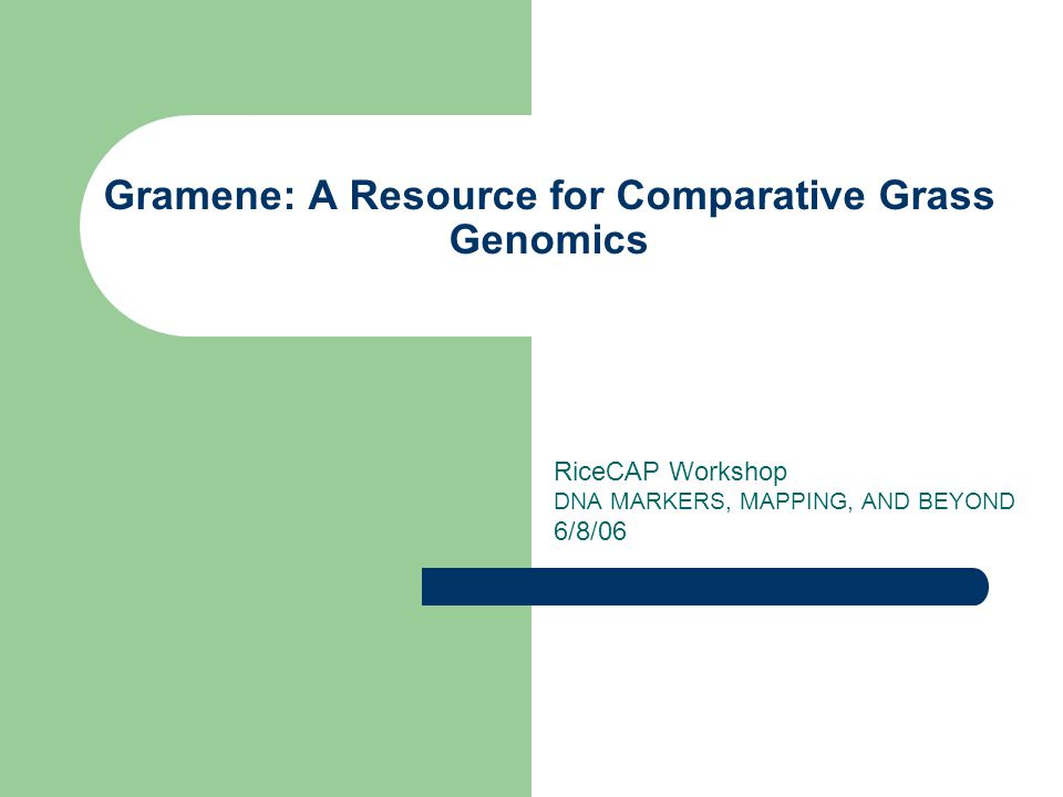 Gramene: A Resource for Comparative Grass Genomics RiceCAP Workshop DNA MARKERS, MAPPING, AND BEYOND 6/8/06