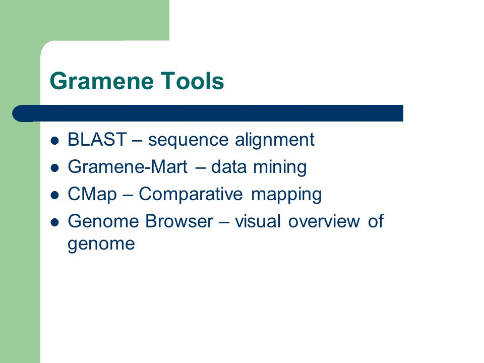 Gramene Tools BLAST – sequence alignment Gramene-Mart – data mining CMap – Comparative mapping Genome Browser – visual overview of genome