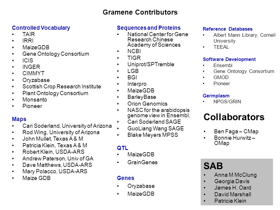 Gramene Contributors Controlled Vocabulary TAIR IRRI MaizeGDB Gene Ontology Consortium ICIS INGER CIMMYT Oryzabase Scottish Crop Research Institute Plant Ontology Consortium Monsanto Pioneer Maps Cari Soderland, University of Arizona Rod Wing, University of Arizona John Mullet, Texas A & M Patricia Klein, Texas A & M Robert Klein, USDA-ARS Andrew Paterson, Univ of GA Dave Matthews, USDA-ARS Mary Polacco, USDA-ARS Maize GDB Sequences and Proteins National Center for Gene Research Chinese Academy of Sciences NCBI TIGR Uniprot/SPTremble LGB BGI Interpro MaizeGDB BarleyBase Orion Genomics NASC for the arabidopsis genome view in Ensembl.