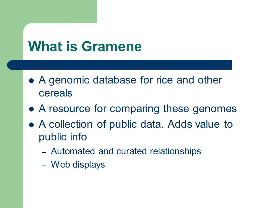 What is Gramene A genomic database for rice and other cereals A resource for comparing these genomes A collection of public data.