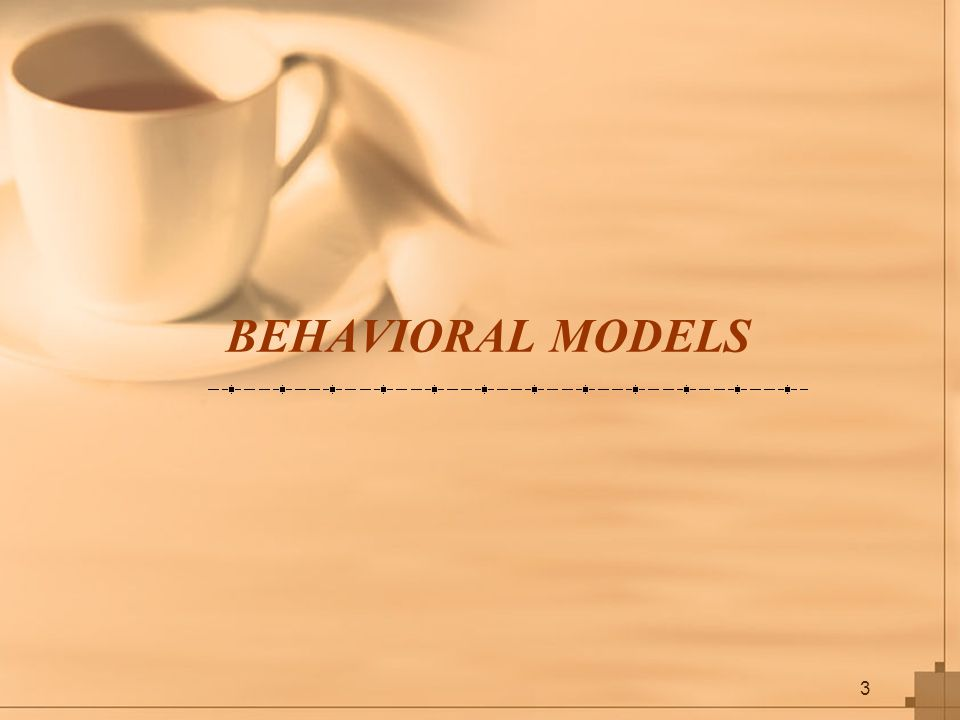 3 BEHAVIORAL MODELS